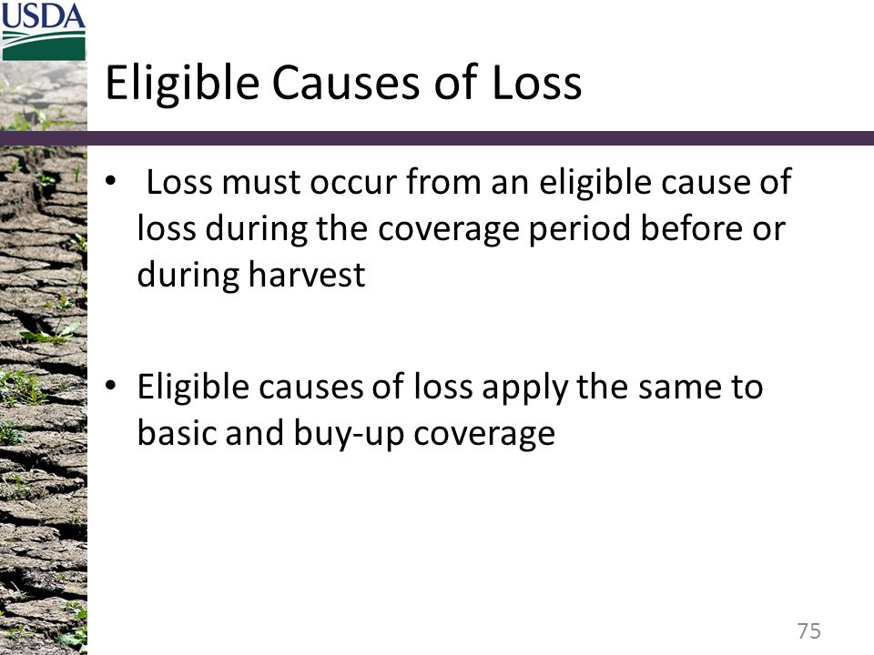 Eligible Causes of Loss