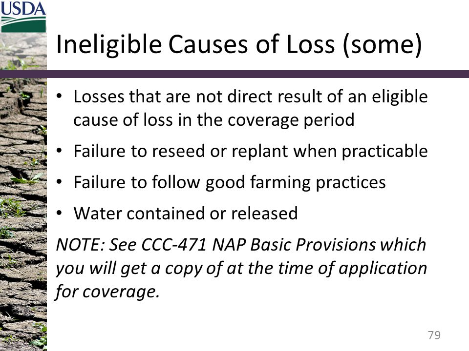 Ineligible Causes of Loss (some)