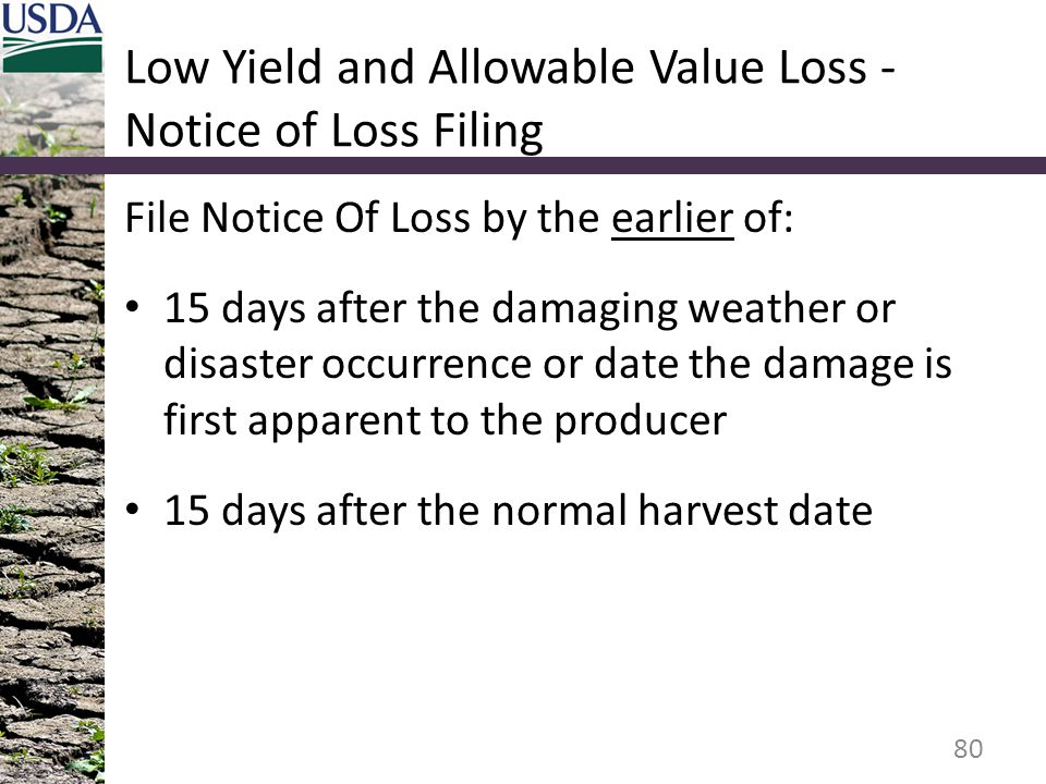 Low Yield and Allowable Value Loss - Notice of Loss Filing