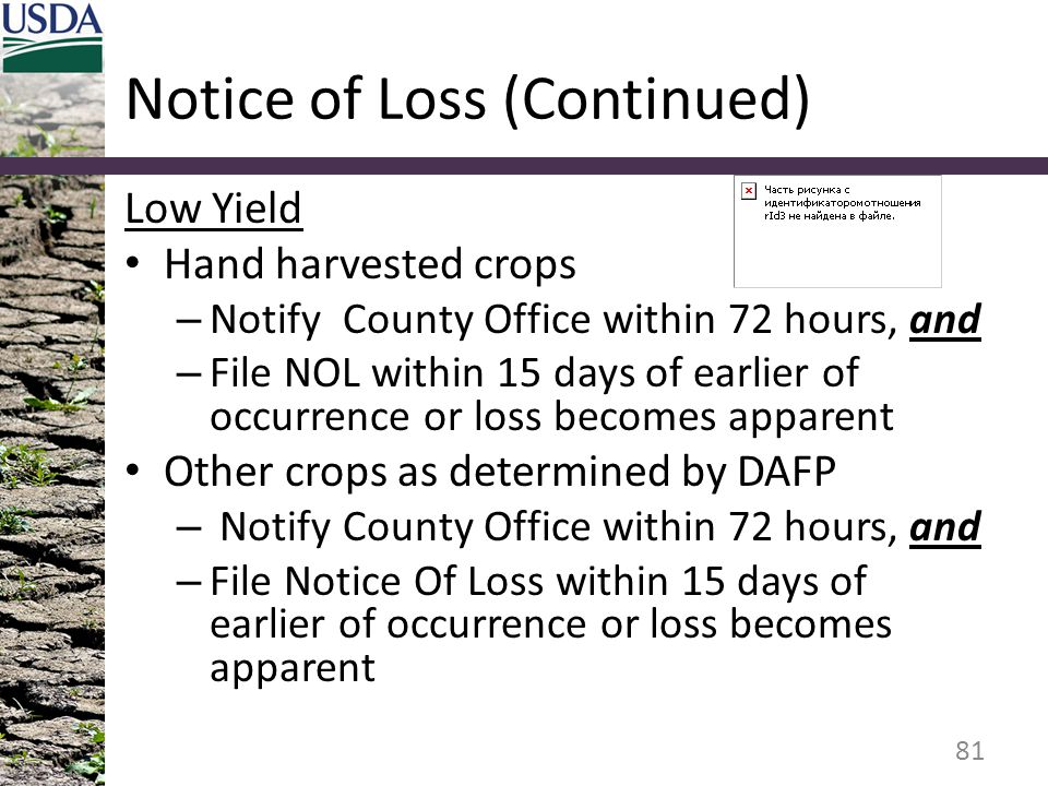 Notice of Loss (Continued)