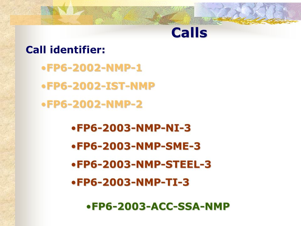 Calls Call identifier: FP6-2002-NMP-1 FP6-2002-IST-NMP FP6-2002-NMP-2