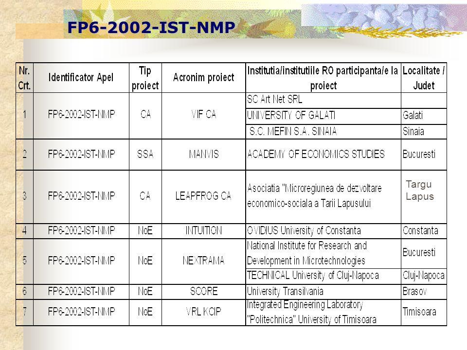 FP6-2002-IST-NMP Targu Lapus
