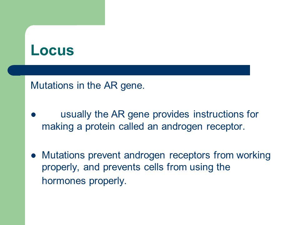 Locus Mutations in the AR gene.