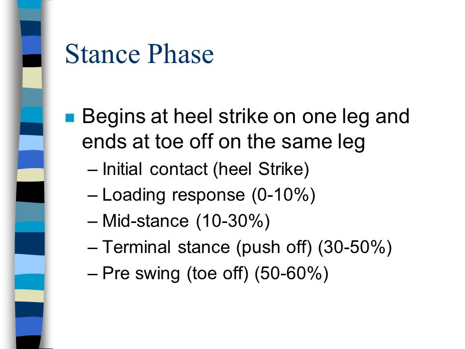 Stance Phase Begins at heel strike on one leg and ends at toe off on the same leg. Initial contact (heel Strike)