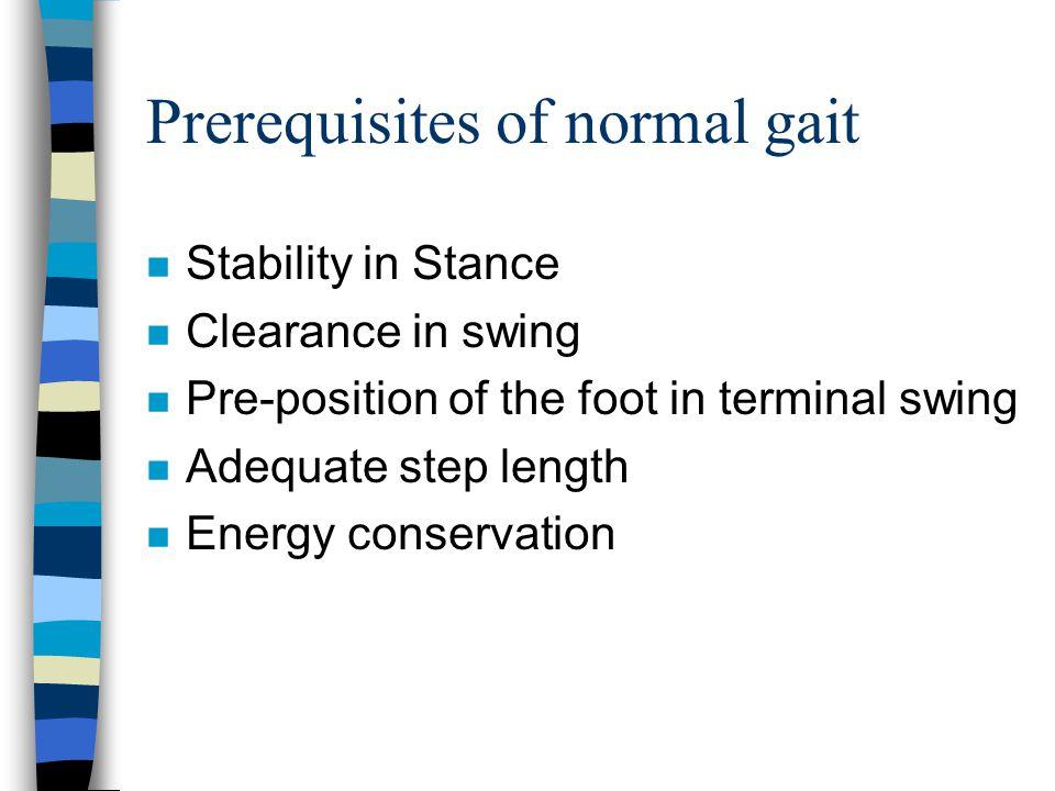 Prerequisites of normal gait