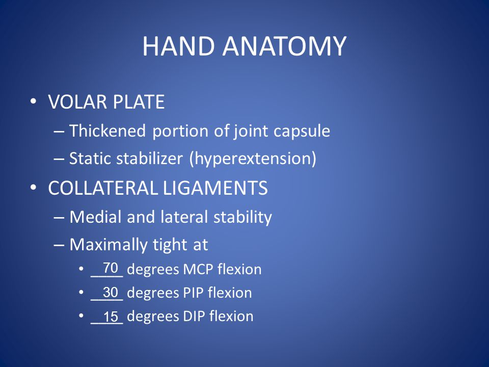 HAND ANATOMY VOLAR PLATE COLLATERAL LIGAMENTS
