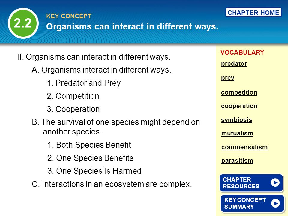 Organisms can interact in different ways.