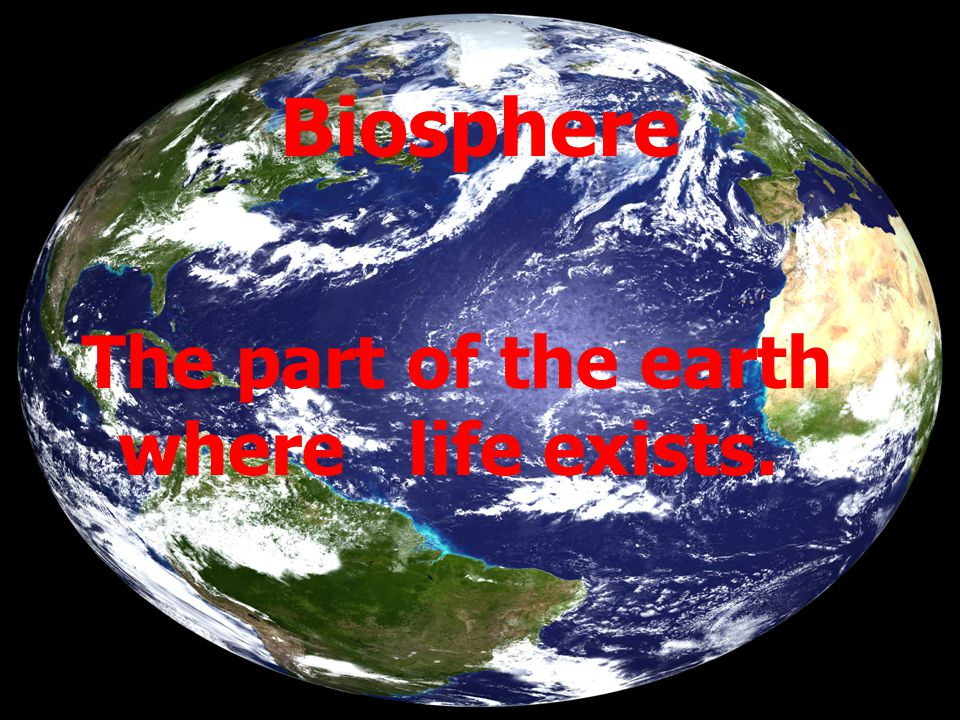 Biosphere The part of the earth where life exists.
