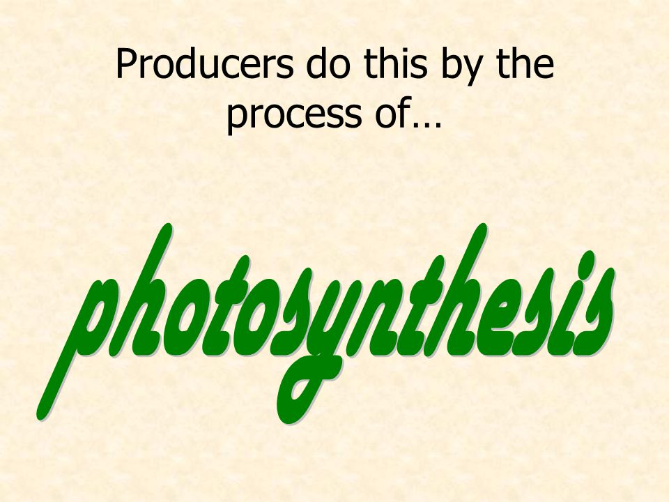 Producers do this by the process of…