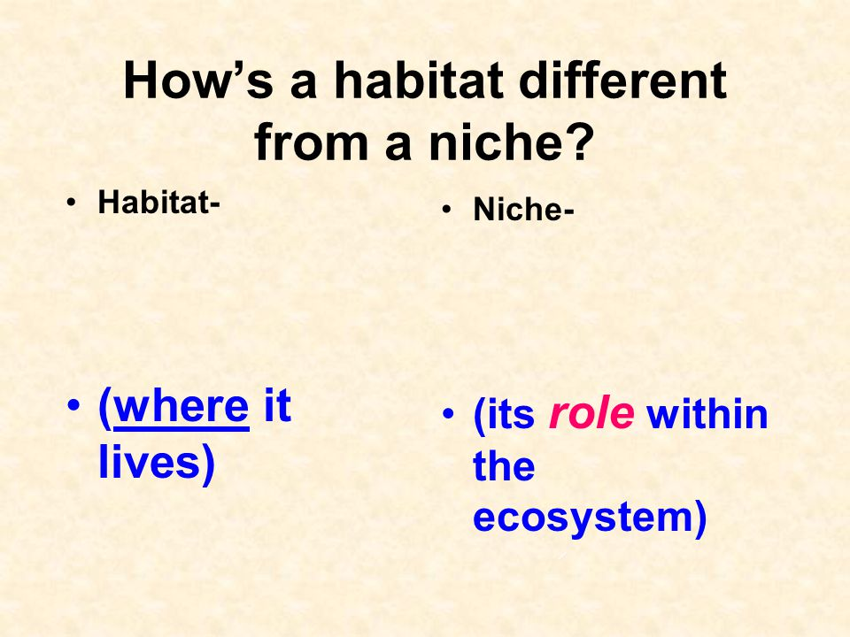 How's a habitat different from a niche