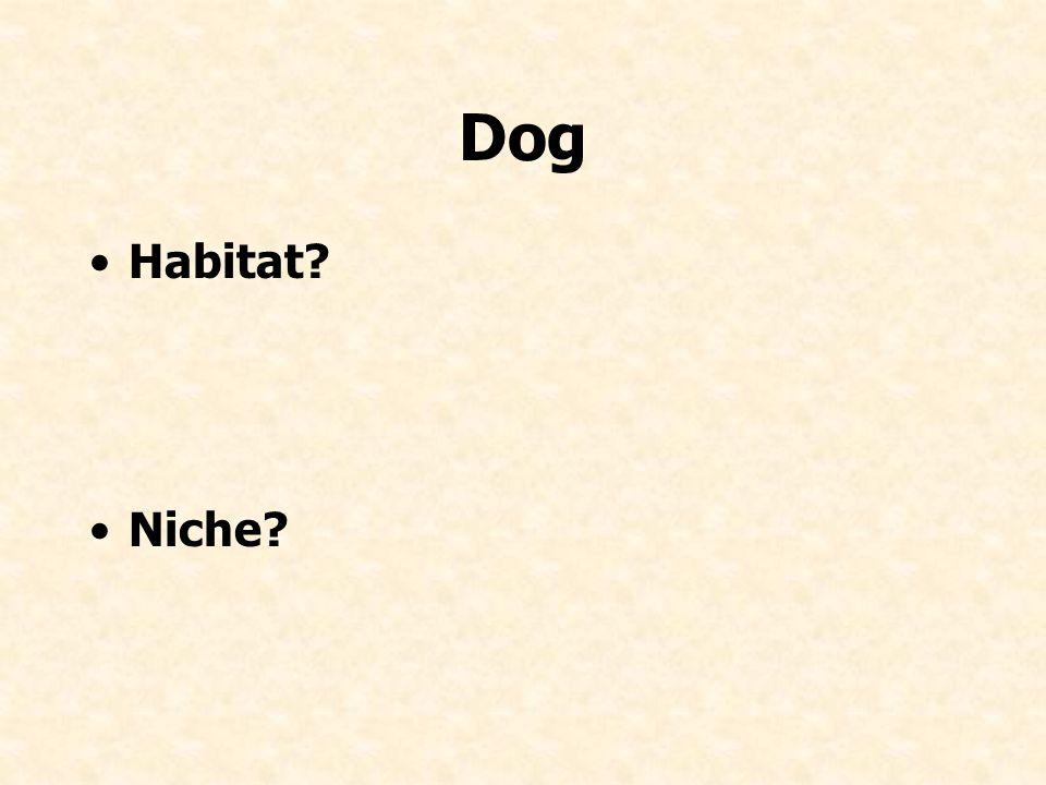 Dog Habitat Niche
