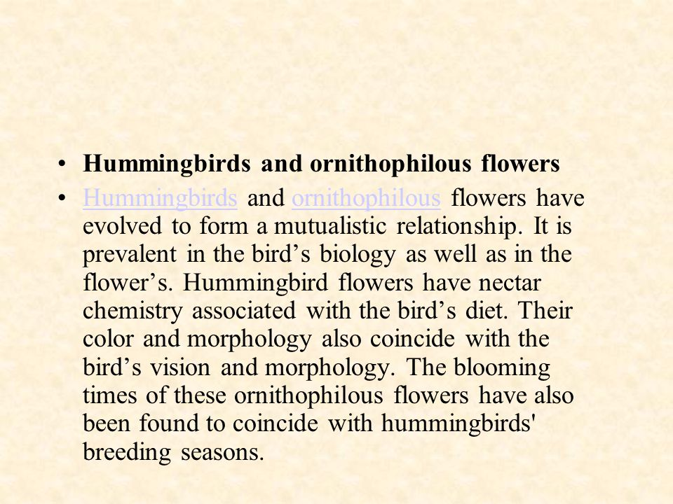 Hummingbirds and ornithophilous flowers