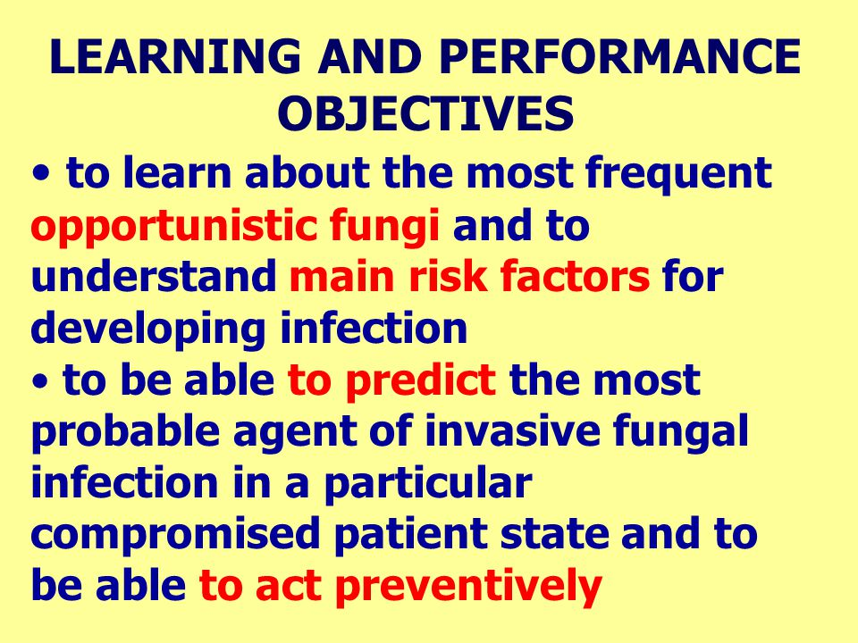 LEARNING AND PERFORMANCE OBJECTIVES