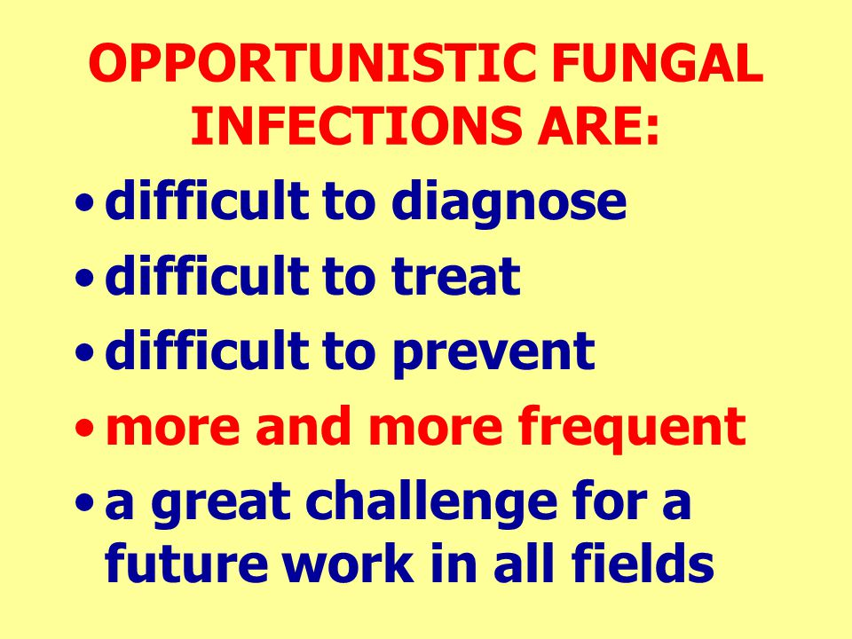 OPPORTUNISTIC FUNGAL INFECTIONS ARE: