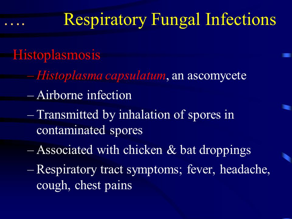 …. Respiratory Fungal Infections