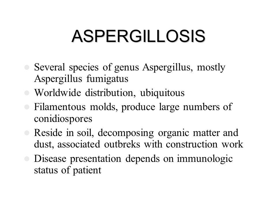 ASPERGILLOSIS Several species of genus Aspergillus, mostly Aspergillus fumigatus. Worldwide distribution, ubiquitous.