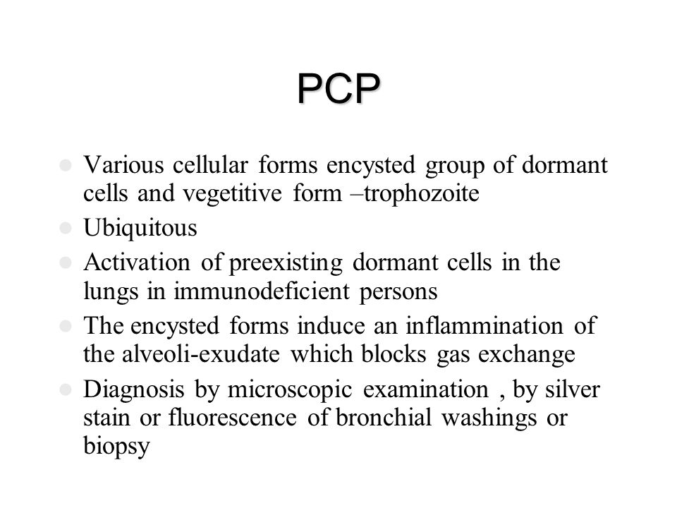 PCP Various cellular forms encysted group of dormant cells and vegetitive form –trophozoite. Ubiquitous.