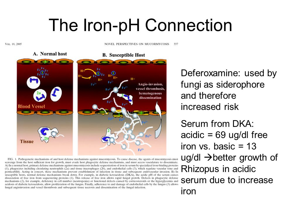 The Iron-pH Connection