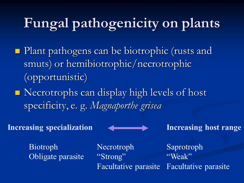 Fungal pathogenicity on plants