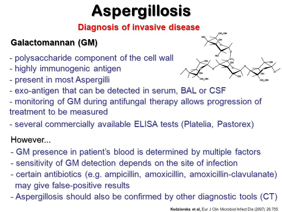 Aspergillosis Diagnosis of invasive disease Galactomannan (GM)