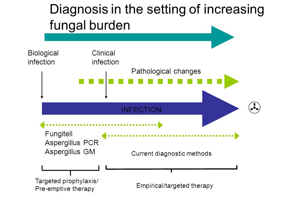  Diagnosis in the setting of increasing fungal burden Biological