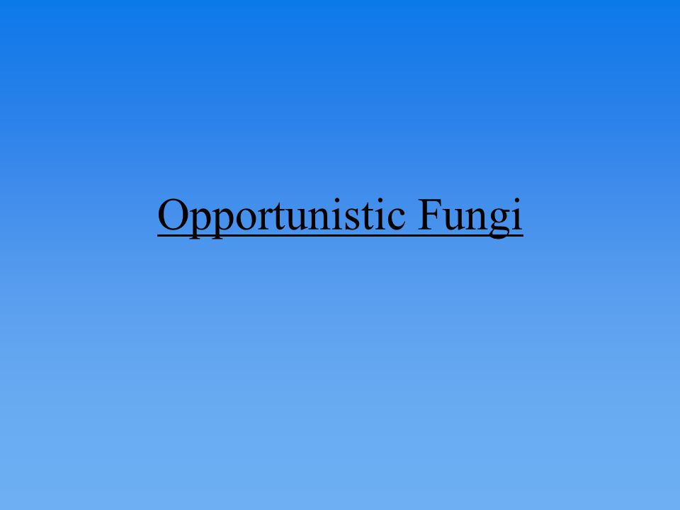 Opportunistic Fungi