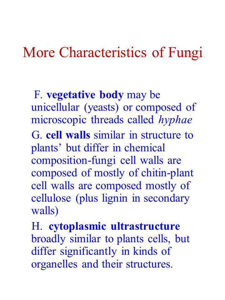 More Characteristics of Fungi