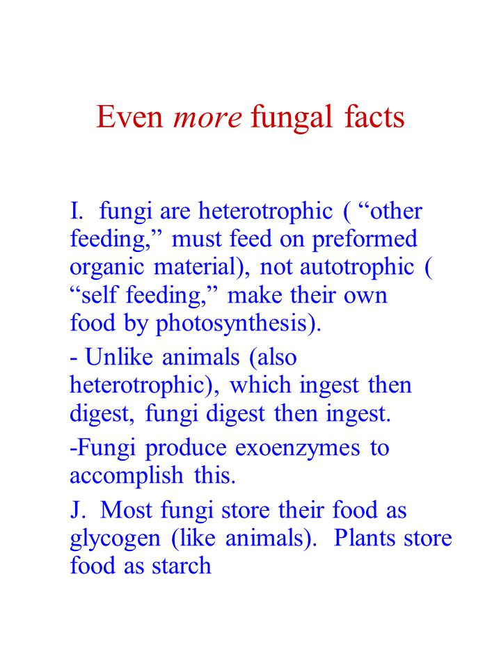 Even more fungal facts