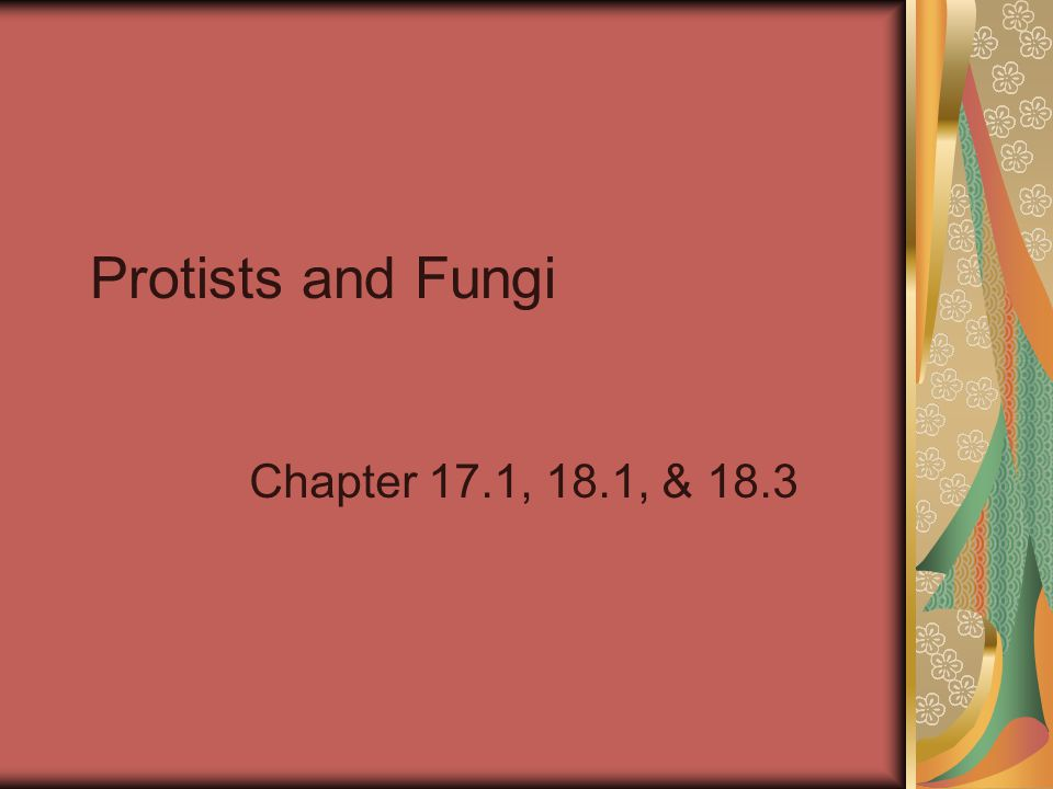 Protists and Fungi Chapter 17.1, 18.1, & 18.3