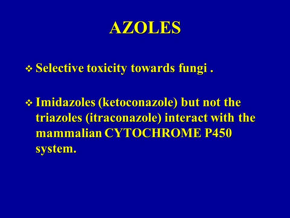 AZOLES Selective toxicity towards fungi .