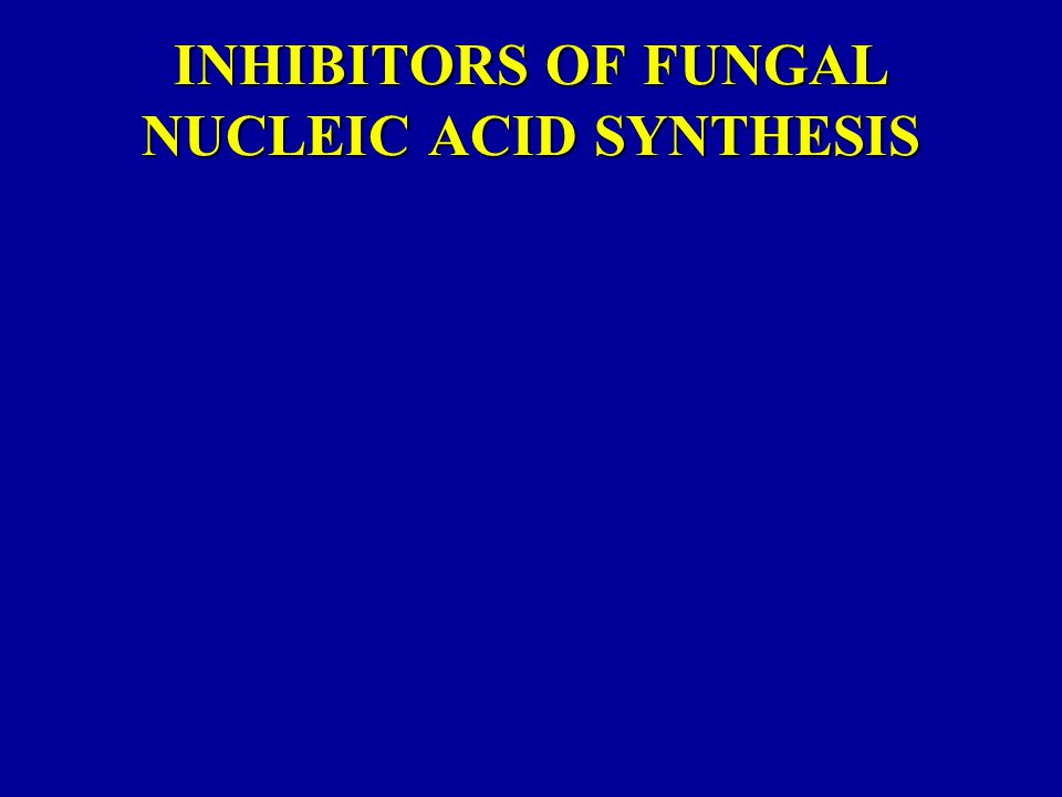 INHIBITORS OF FUNGAL NUCLEIC ACID SYNTHESIS