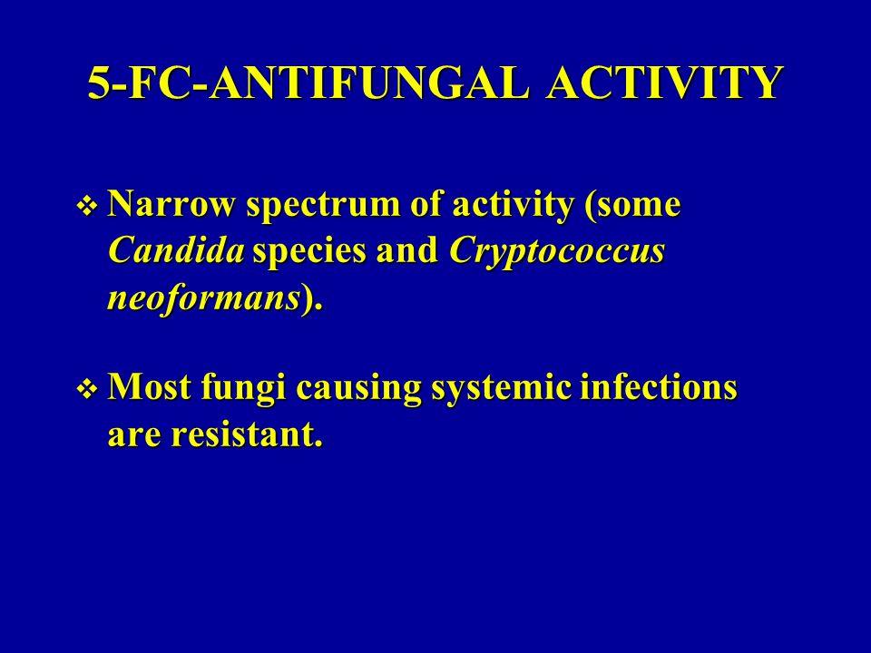 5-FC-ANTIFUNGAL ACTIVITY