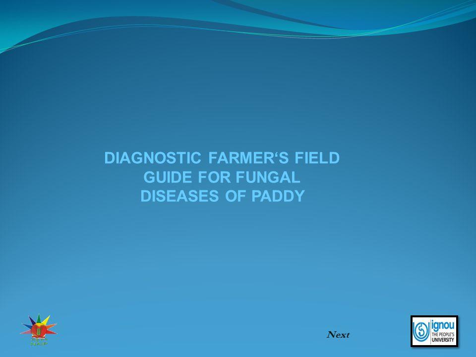 DIAGNOSTIC FARMER'S FIELD