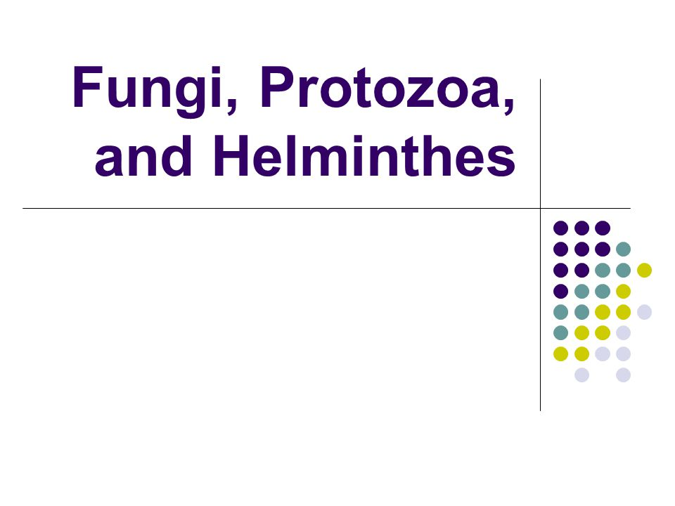 Fungi, Protozoa, and Helminthes