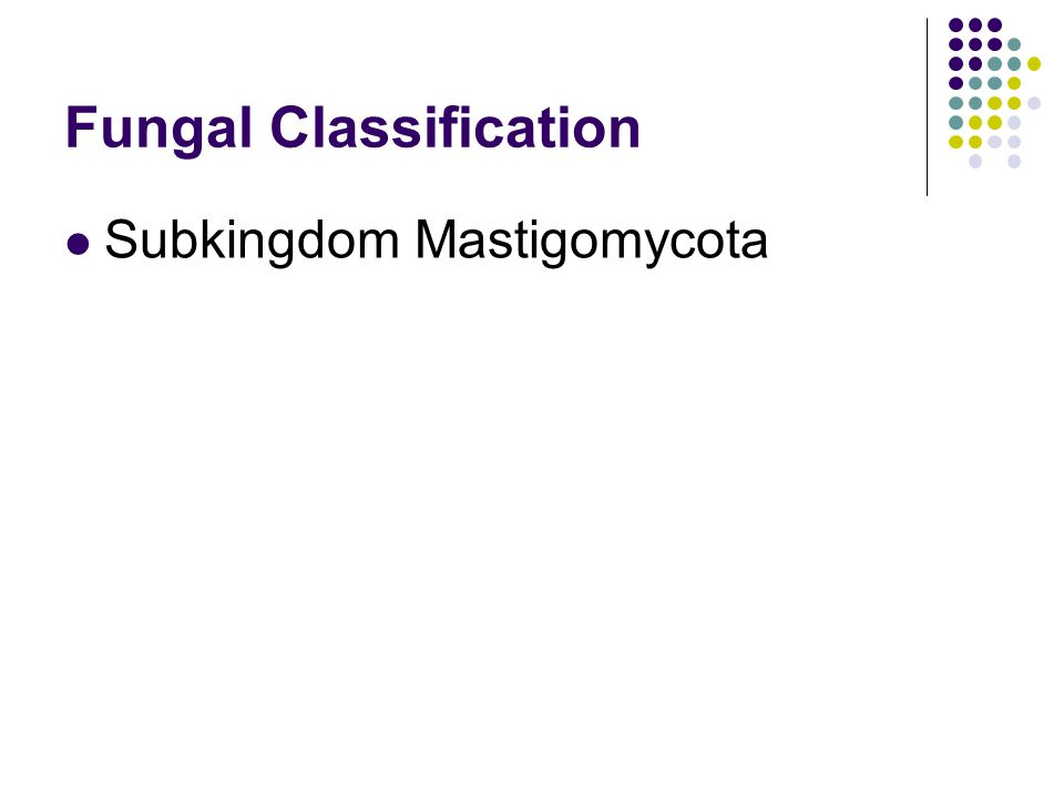 Fungal Classification
