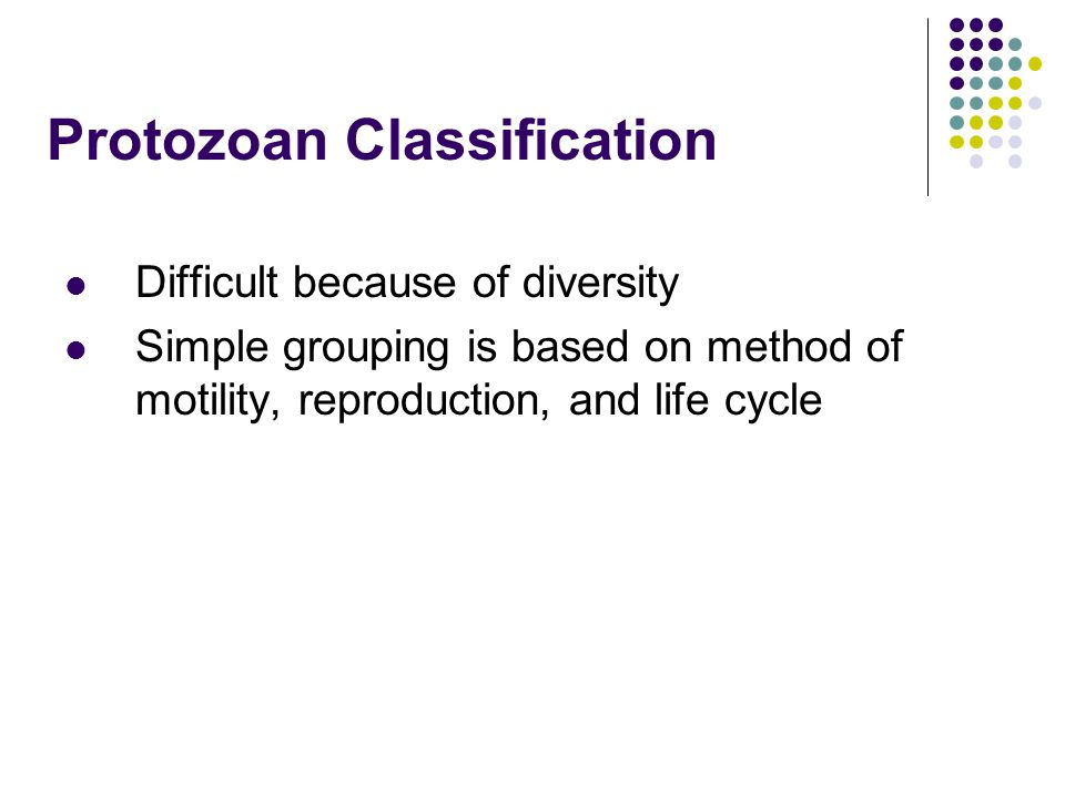 Protozoan Classification