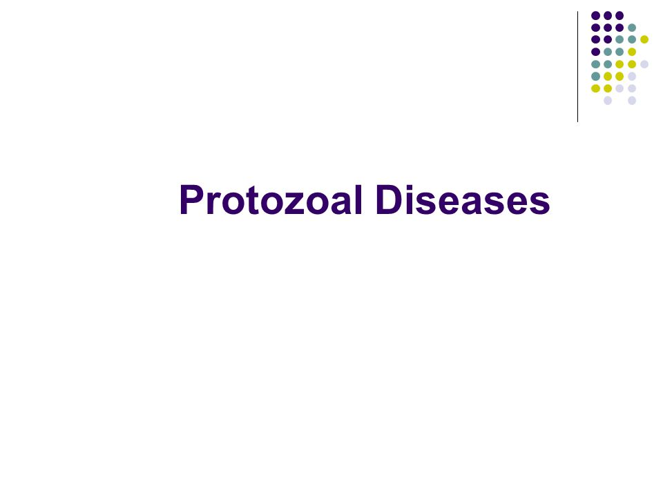 Protozoal Diseases