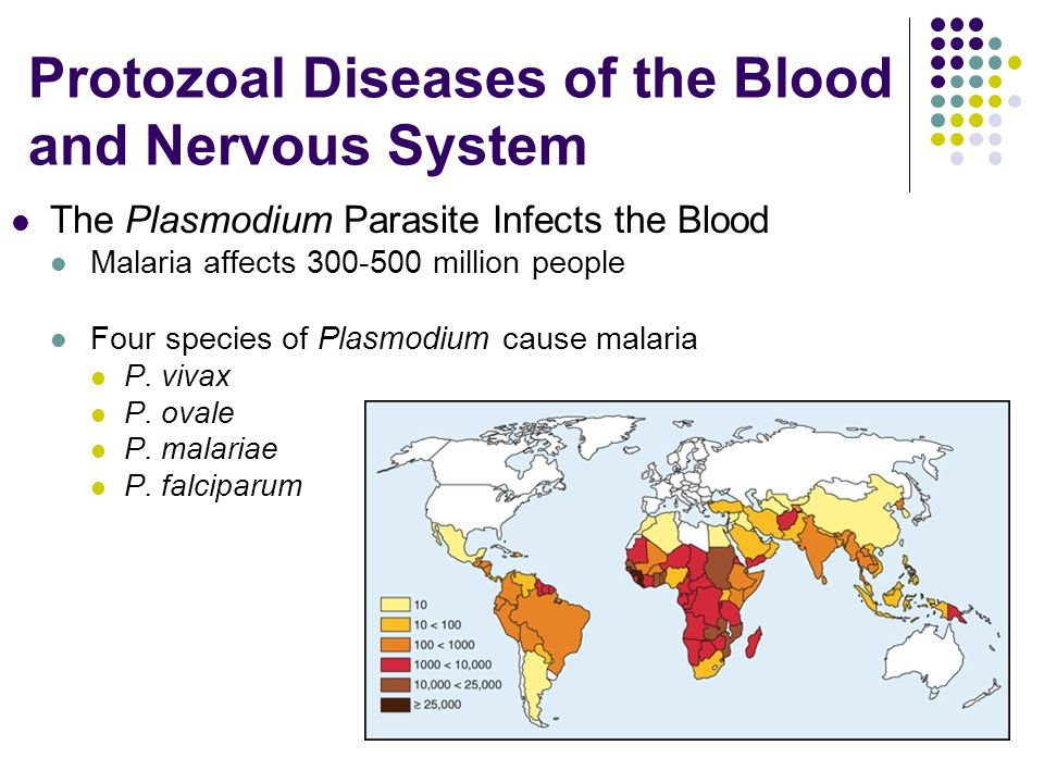Protozoal Diseases of the Blood and Nervous System