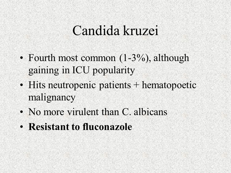 Candida kruzei Fourth most common (1-3%), although gaining in ICU popularity. Hits neutropenic patients + hematopoetic malignancy.