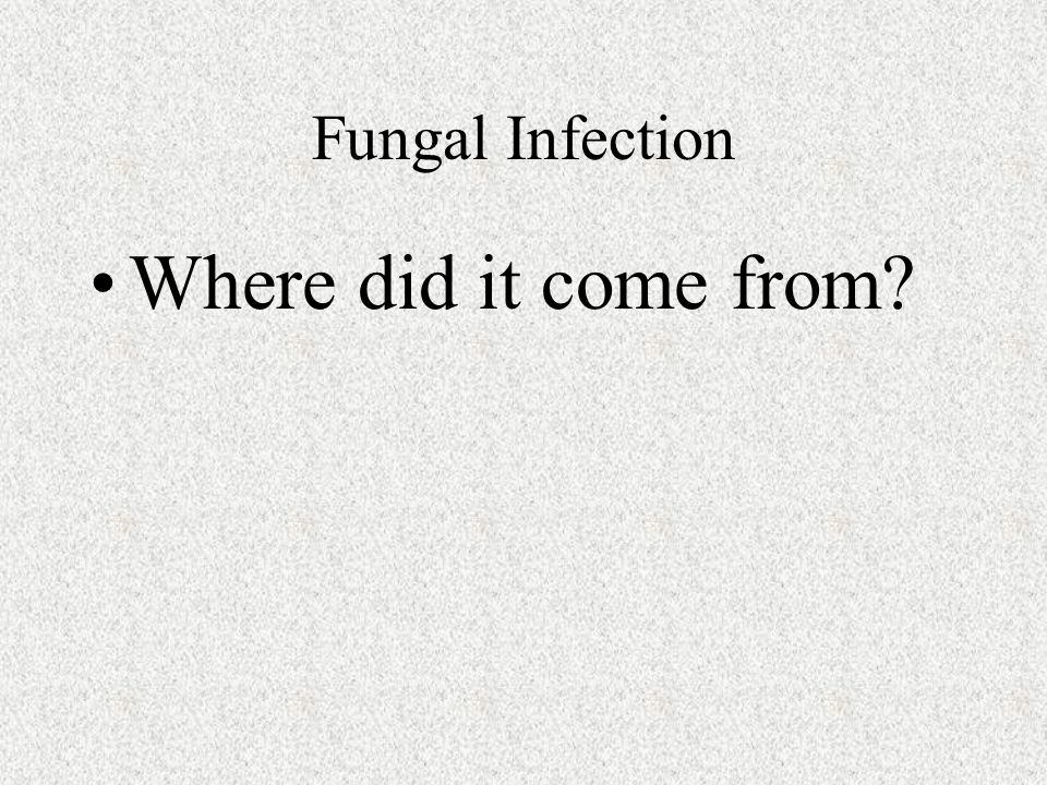 Fungal Infection Where did it come from