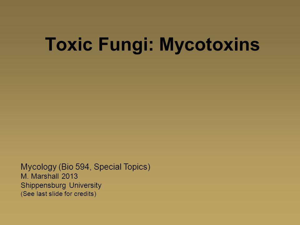 Toxic Fungi: Mycotoxins