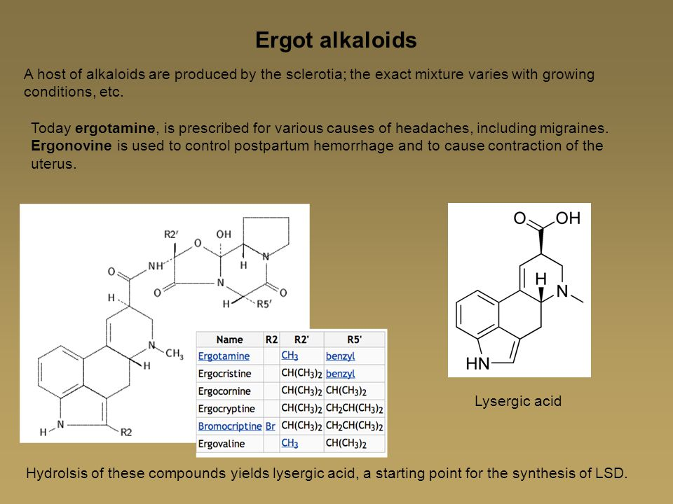 Ergot alkaloids A host of alkaloids are produced by the sclerotia; the exact mixture varies with growing conditions, etc.