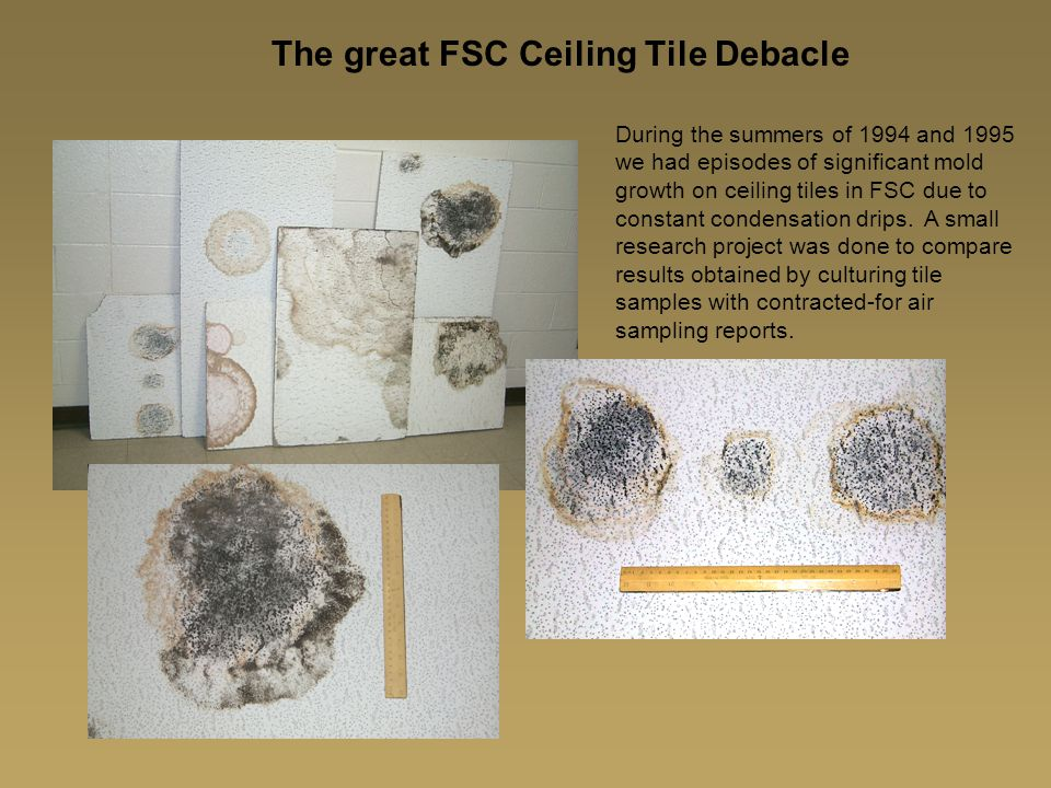 The great FSC Ceiling Tile Debacle