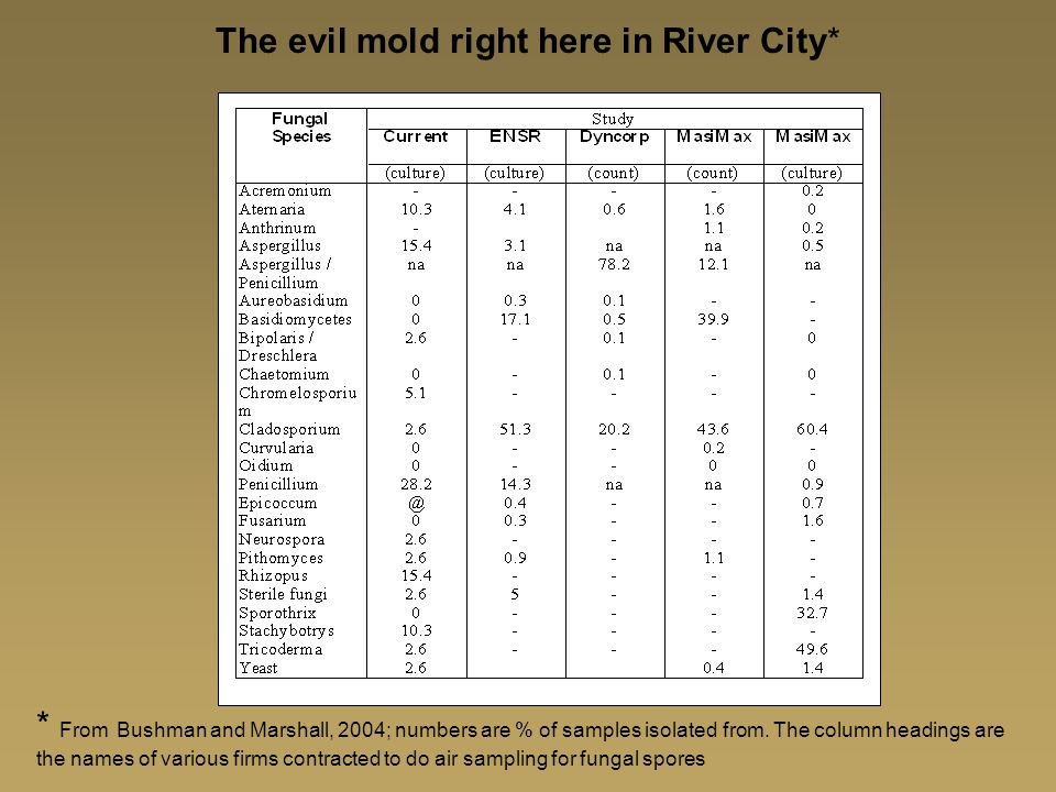 The evil mold right here in River City*