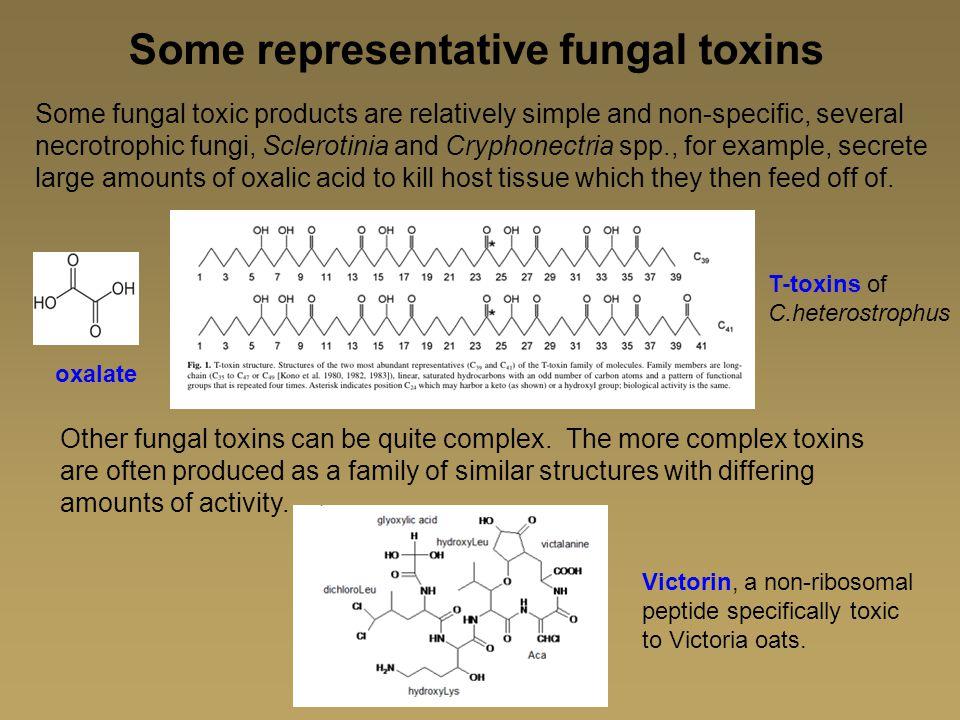 Some representative fungal toxins