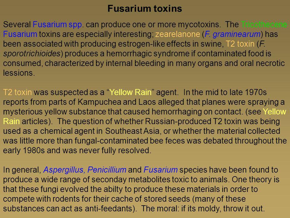 Fusarium toxins