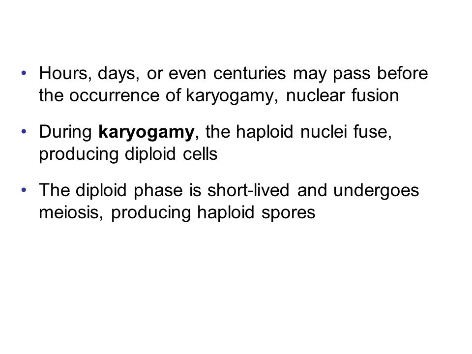Hours, days, or even centuries may pass before the occurrence of karyogamy, nuclear fusion