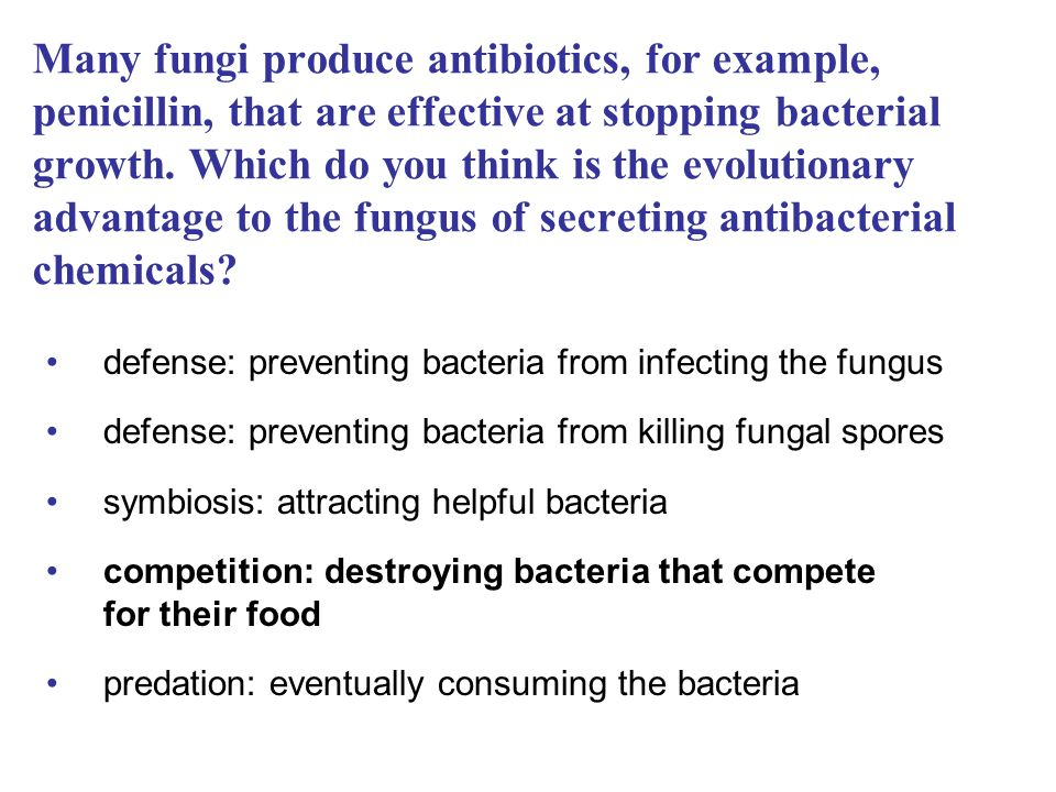Many fungi produce antibiotics, for example, penicillin, that are effective at stopping bacterial growth. Which do you think is the evolutionary advantage to the fungus of secreting antibacterial chemicals