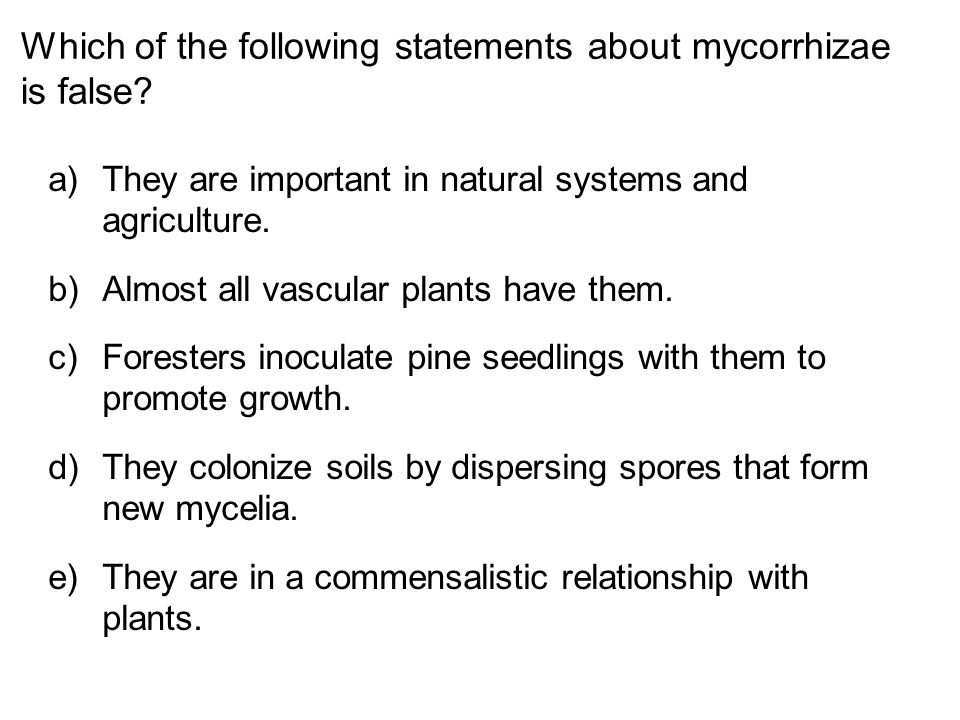 Which of the following statements about mycorrhizae is false