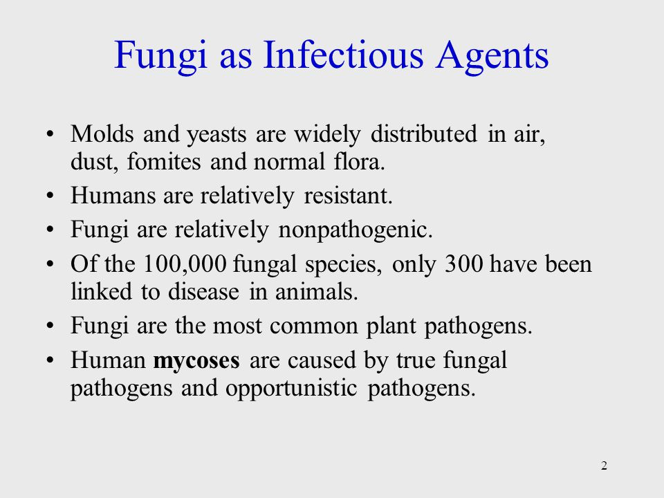 Fungi as Infectious Agents